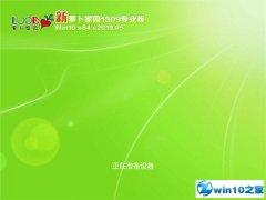 萝卜家园 Win10 x64(1809专业版)v2019.05